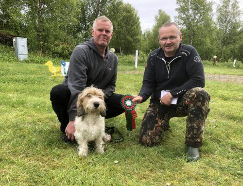 ISMANS DIANA Norsk Viltspor Champion
